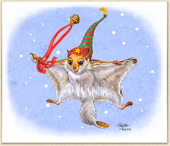 Caryad: flying squirrel, Christmas